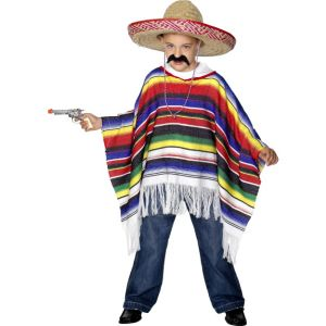 27210 - Poncho Multi-Coloured Costume