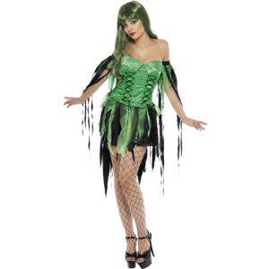 32903 - Naughty Fairy Witch Costume, Green