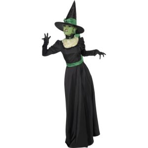 33134 - Wicked Witch Costume, Black