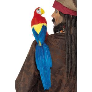 33656 - Parrot