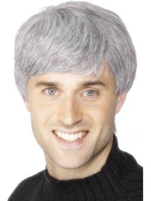 42209 - Corporate Wig, Grey